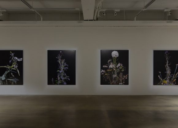 Soungyeon Jo participates in a group exhibition 'Frames after Frames' 조성연, 대구미술관 '프레임 이후의 프레임'展 참여